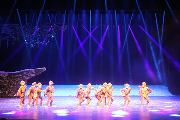 峨眉山演艺中心剧场舞台灯光、音响、视频项目